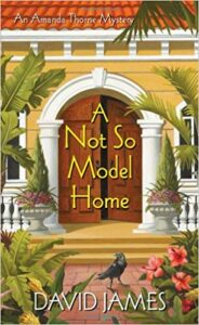 Book Cover: A Not So Model Home